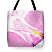 Earthworm, Transverse Section Tote Bag