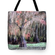 East Texas Tote Bag