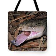 Eastern Blue-tongue Skink Threat Display Tote Bag