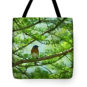 Eastern Bluebird In Bald Cypress Tree Tote Bag