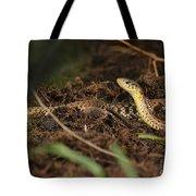 Eastern Garter Snake - Checkered Coloration Tote Bag