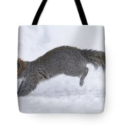 Eastern Gray Squirrel Running Tote Bag