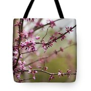 Eastern Redbud Asian Style Tote Bag
