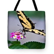 Eastern Tiger Swallowtail 5 Tote Bag