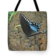 Eastern Tiger Swallowtail 8537 3215 Tote Bag