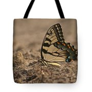 Eastern Tiger Swallowtail 8542 3219 Tote Bag