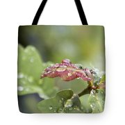 Eau De Vie - S01r03 Tote Bag by Variance Collections