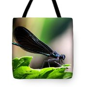 Ebony Jewelwing In The Spotlight Tote Bag