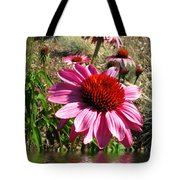 Echinacea In Water Tote Bag