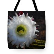 Echinopsis Candicans Tote Bag
