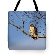 Edge Of The Field Tote Bag