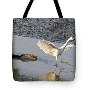 Egret Being Chased By Alligator Tote Bag
