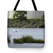 Egret Over Water Tote Bag