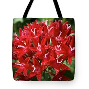 Egyptian Star Cluster Tote Bag