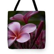 Eia Ku'u Lei Aloha Kula - Pua Melia - Pink Tropical Plumeria Maui Hawaii Tote Bag