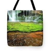 Elakala Falls Portrait Tote Bag
