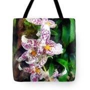Elegant Beallara Orchid Tote Bag