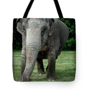 Elephant Greet Tote Bag