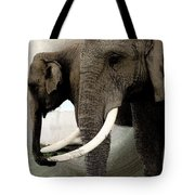 Elephant Meet Tote Bag