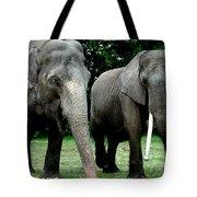 Elephant Meeting Tote Bag