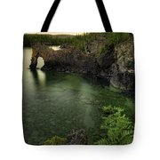 Elephant Rests In The Green Lagoon   Tote Bag
