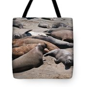 Elephant Seal Colony On Big Sur  Tote Bag