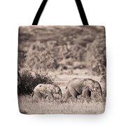 Elephants Walking In A Row Samburu Kenya Tote Bag