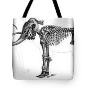Elephas, Extant Cenozoic Mammal Tote Bag