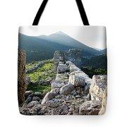 Eleutherae Walls Tote Bag