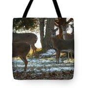 Eleven Deer Standing Tote Bag