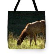 Elk Calf Tote Bag