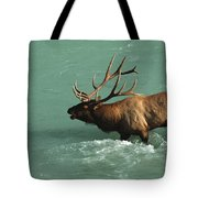 Elk In The Athabasca River Tote Bag