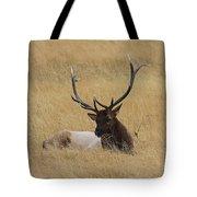 Elk In The Meadow Tote Bag