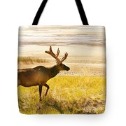 Elk Wanders On Yellow Landscape Tote Bag