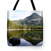 Elkhorn Mountain Reflection Tote Bag