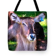 Ellipsis Waterbuck Tote Bag