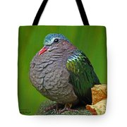 Emerald Ground Dove Tote Bag
