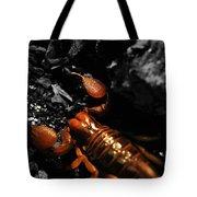 Emperor Scorpion 2.0 Tote Bag