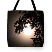 Enchanted By Moonlight Tote Bag
