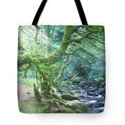 Enchanted Leprechaun Forest Tote Bag