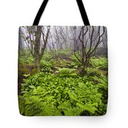 Enchanted Woodland Forest In Fog Blue Ridge Parkway In North Carolina Tote Bag