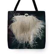 End Of The Feather Tote Bag