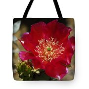 Englemann's Prickly Pear Cactus  Tote Bag
