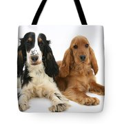 English Cocker Spaniels Tote Bag