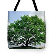 English Oak Quercus Robur In Spring Tote Bag