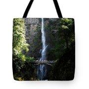 Enjoying Multnomah Falls Tote Bag