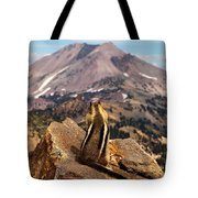 Enjoying The Views Tote Bag