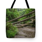 Entrance To Fern Canyon Tote Bag
