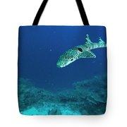 Epaulette Shark Hemiscyllium Ocellatum Tote Bag