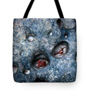 Eroded Rock With Dried Leaves Tote Bag